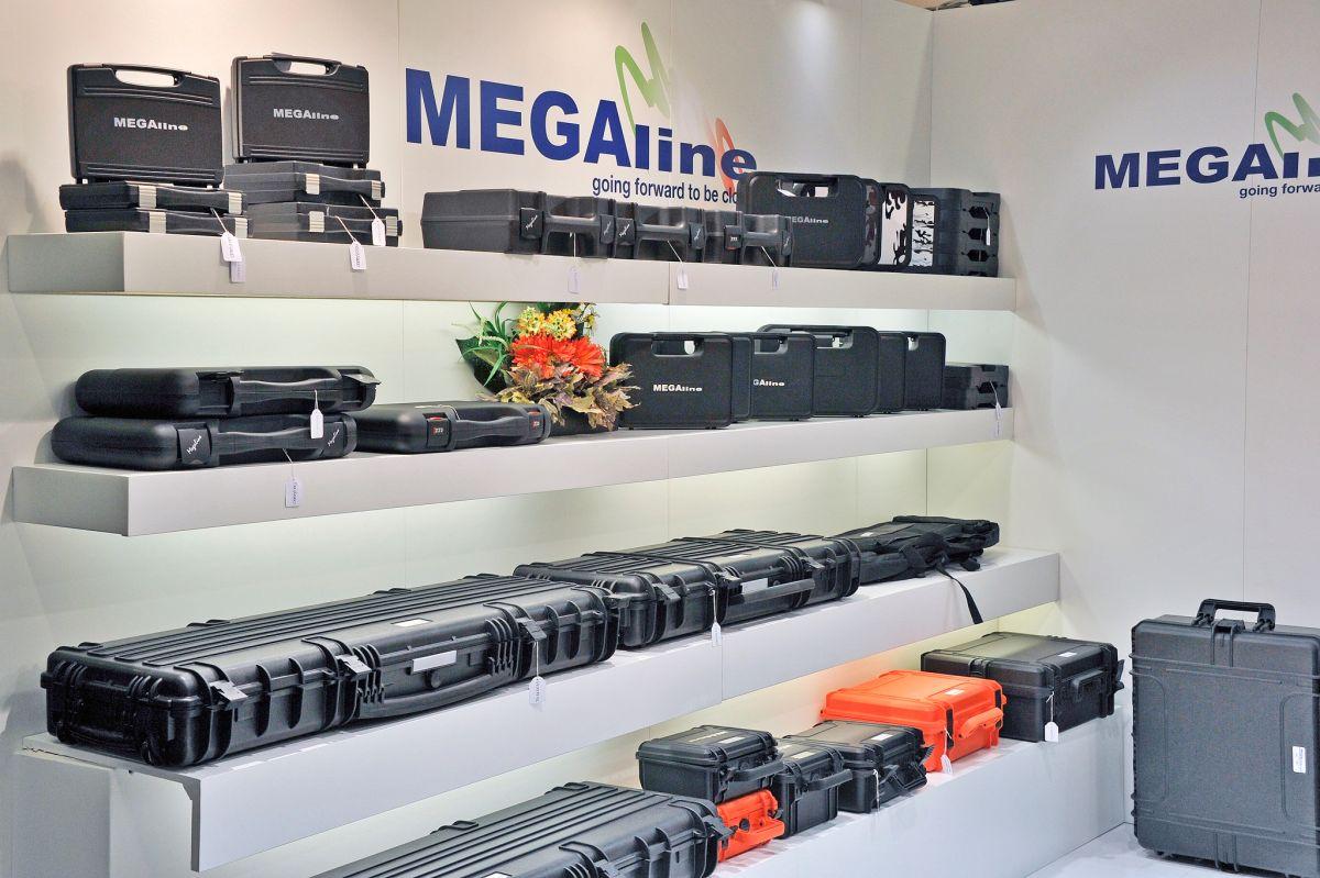 Megaline-Intro